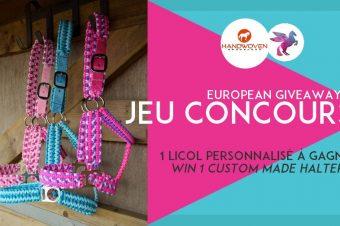 [European Giveaway] 1 licol personnalisé par Handwoven Browbands à gagner !
