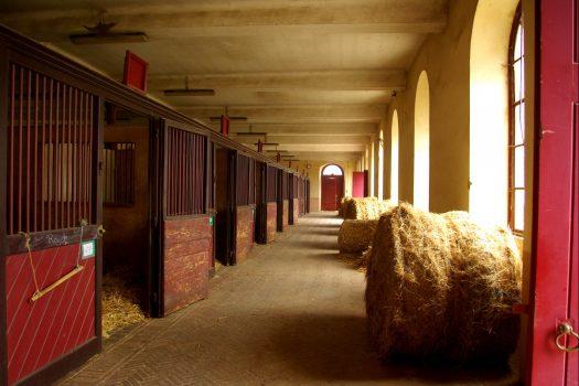 [Dream Barn] Equimov présente le Pôle Hippique du Haras de St-Lô