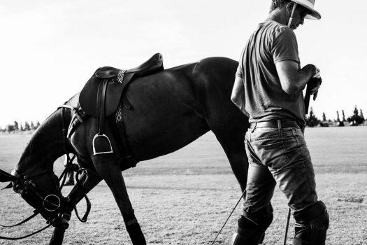 [Equestrian Photography] Irina Kazaridi : Polo Ponies