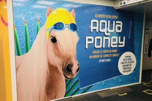 [Advertising] Un centre d'AquaPoney à Paris ?!