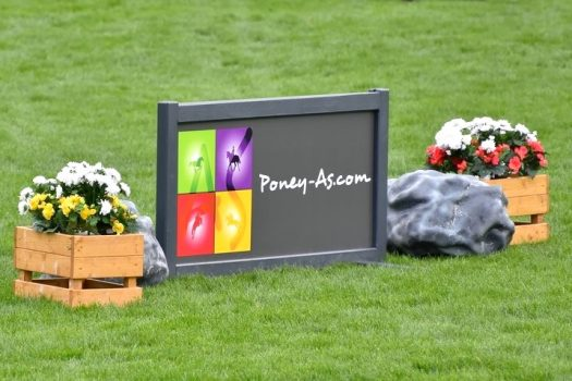 [Business] Poney AS, partenaire de l'application PegaseBuzz