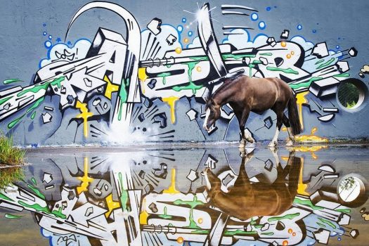[Equestrian Photography] Lisa Mughrasi et le cheval street art