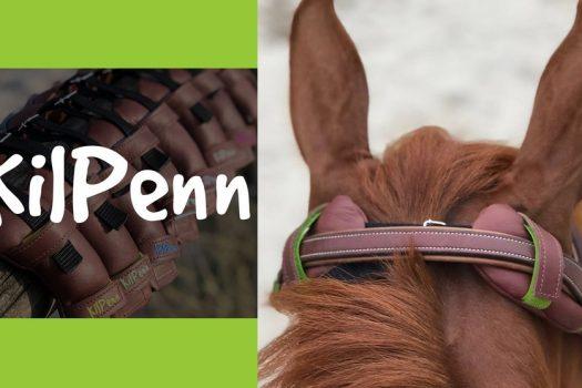[Innovation] Kilpenn libère les cervicales de votre cheval