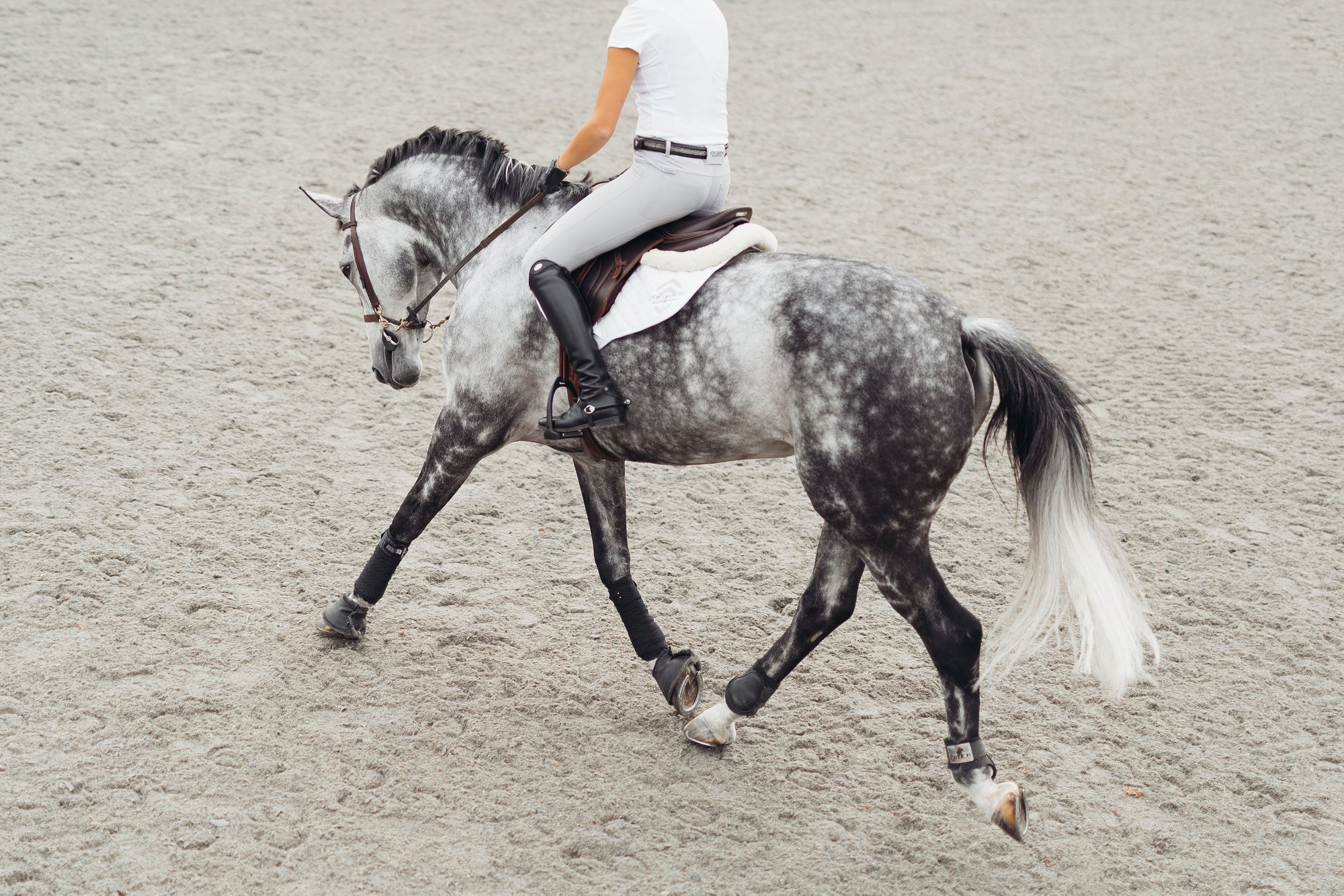 www.pegasebuzz.com   Equestrian fashion : Aztec Diamond lookbook, automn 2018.