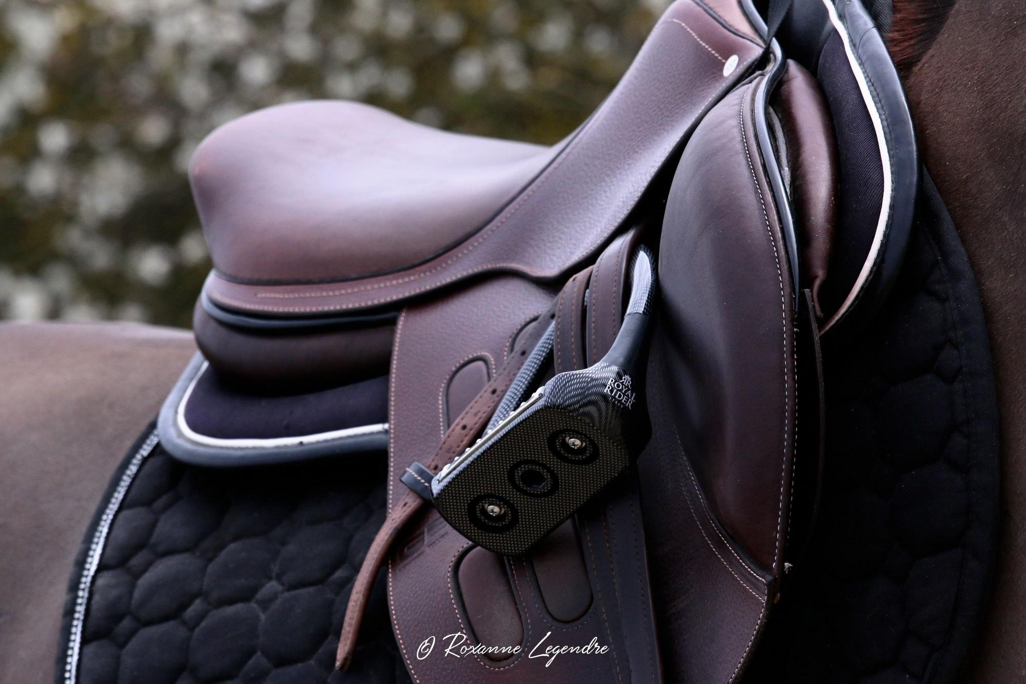 www.pegasebuzz.com | Equipement du cheval : étrier Carbon Flex Royal Rider Stirrups.