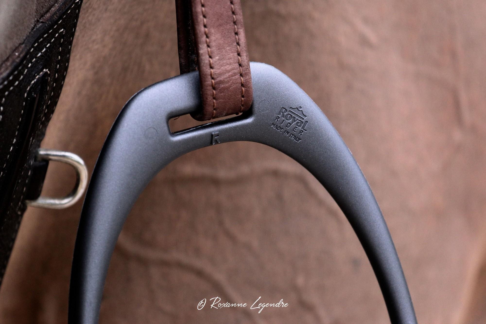 www.pegasebuzz.com | Equipement du cheval : étrier Royal Rider Stirrups.