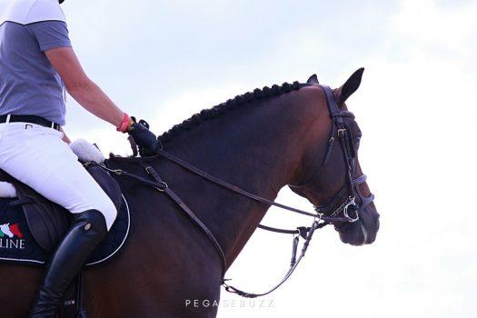 Equitation post-confinement : la consommation des cavaliers va changer