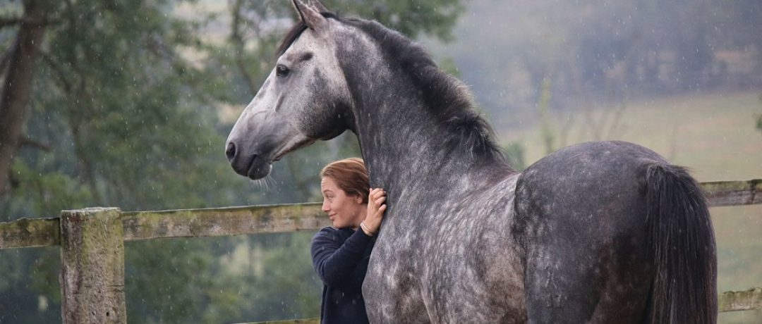 Ilaria Sutera : le cheval de sport de haut-niveau au naturel