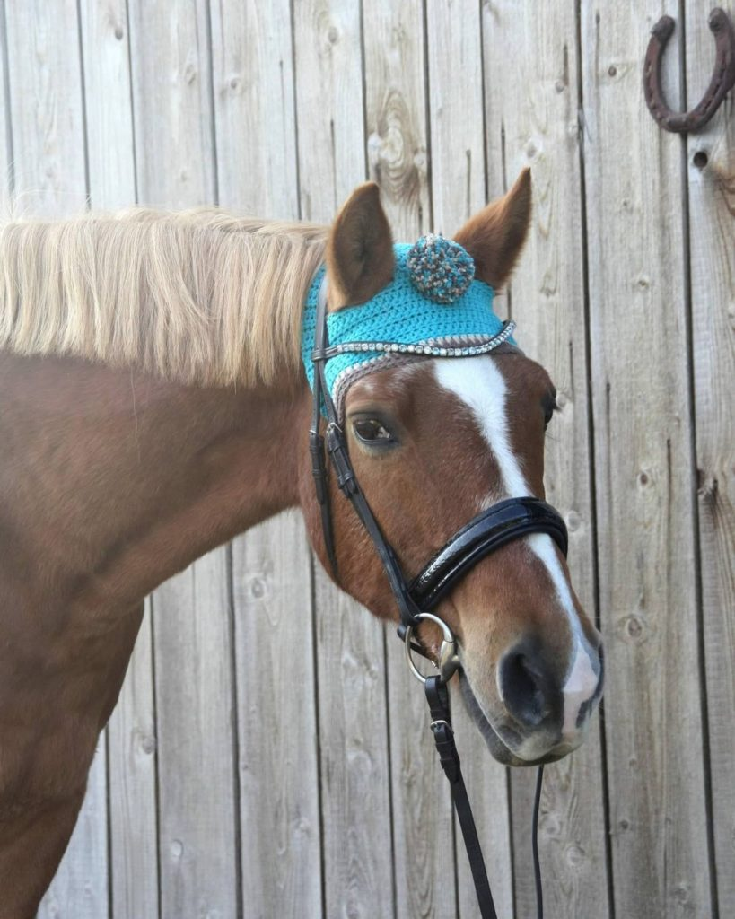 www.pegasebuzz.com   Pom pom toque for horses : Bemützt.
