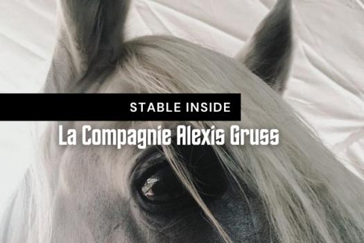 Stable Inside : la Compagnie Alexis Gruss
