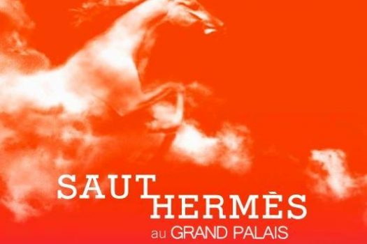 [EN IMAGES] Des photos exclusives du Saut Hermès 2011