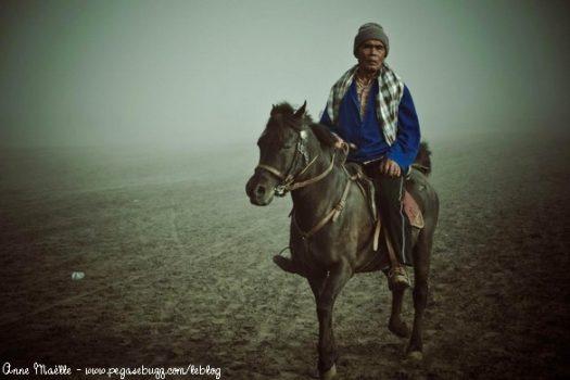 [Travel] Les chevaux du volcan de Bromo à l'île de Java