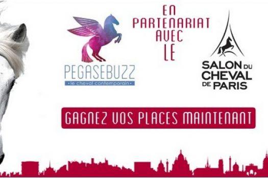[Jeu Concours] Gagnez vos places pour le Salon du Cheval 2013