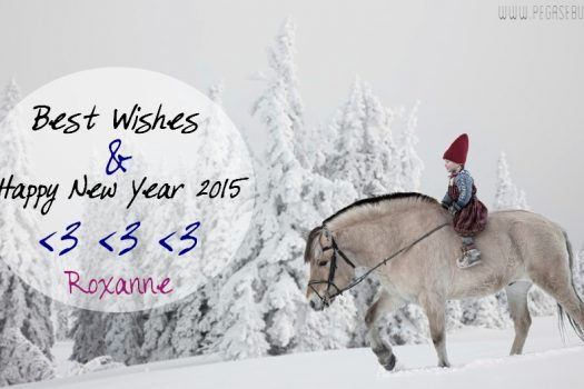 [MOOD] Bonne année 2015 – Happy new year 2015