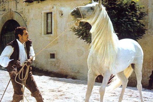 [Culture] Omar Sharif et les chevaux