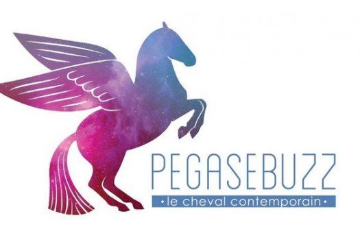 [Good] Mood 2015, une année dans les ailes de PegaseBuzz