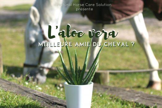 [Concours] Testez la cure d'Aloe Vera pour votre cheval