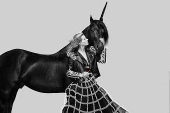 [Ad Campaign] La licorne royale des vins Maison De Grand Esprit