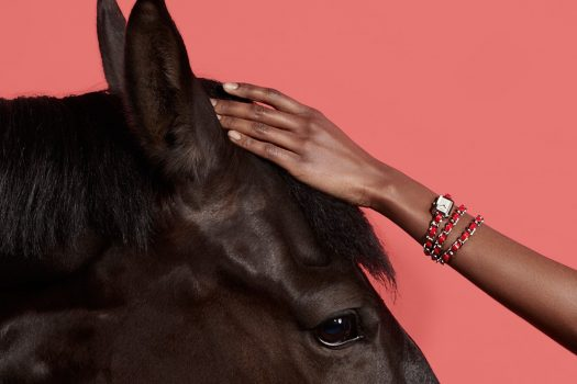 [Fashion Photography] Marcus Gaab : Horse in Style