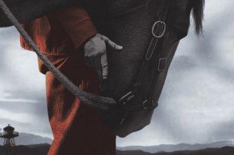 [Movie] The Mustang, le nouveau film produit par Robert Redford