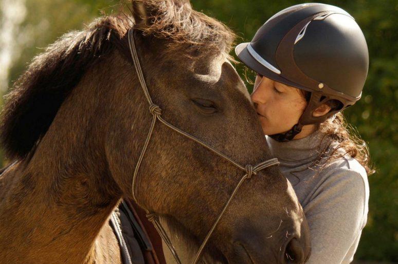 « Beaucoup de cavaliers pros ne savent pas ce qu'est réellement un cheval : ils pilotent »