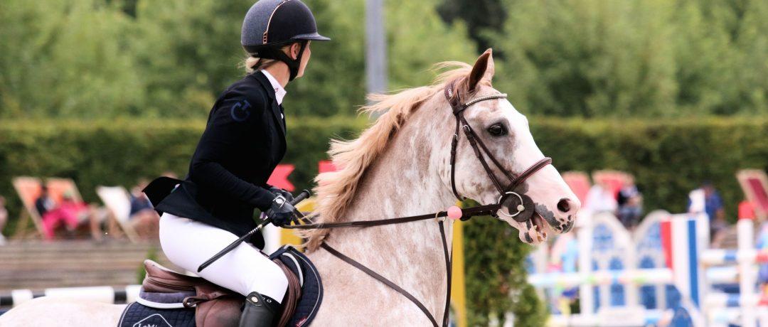 [Coaching] Equitation : pourquoi les «clients» ne progressent pas