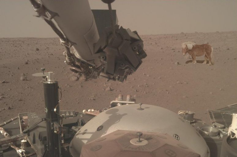 Et s'il y avait des poneys sur la planète Mars ?
