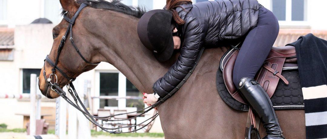 [Filière Equine] Ce que sera le monde du cheval en 2050