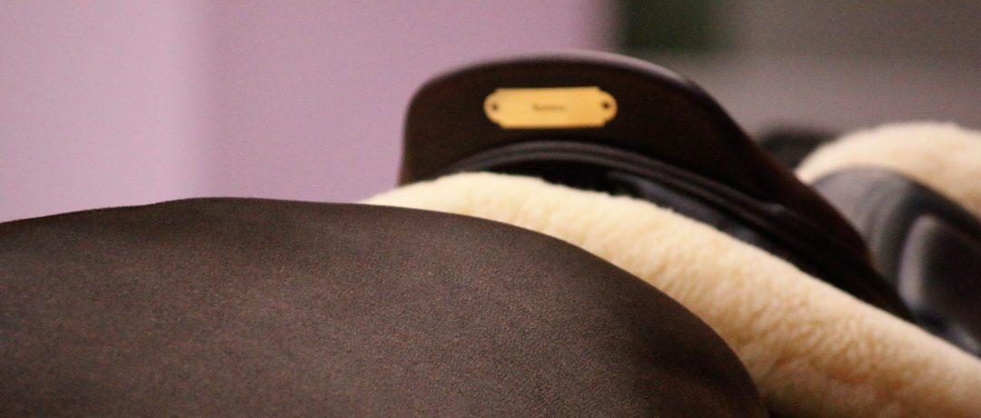 Acheter une selle : pourquoi le Saddle Fitting doit évoluer