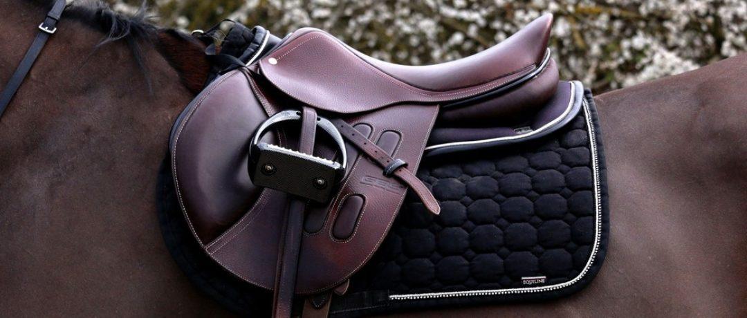 Pourquoi et comment choisir un saddle fitter ?